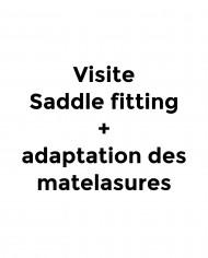 Amplitude-Sellerie-Boutique-Prestations-visite-saddle-fitting-matelassures-TITRE-tiny-meta-2386